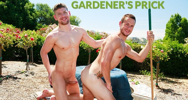next-door-buddies-gardeners-prick